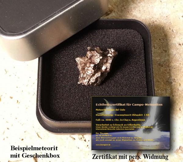Meteorit XL 9-12 Gramm