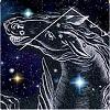 Stern kaufen stern taufen