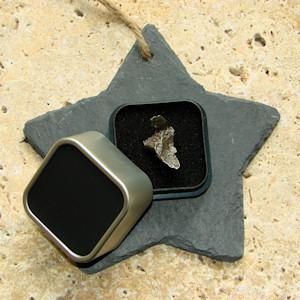 Meteorit Sikhote Alin sternschnuppe kaufen