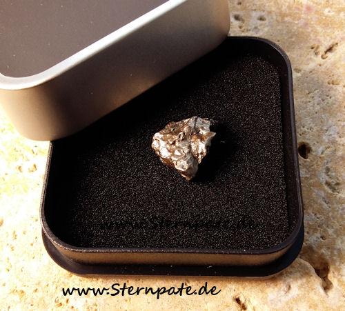 Regulus (Sikhote-Alin Meteorit)  Außergewöhnliche Form!