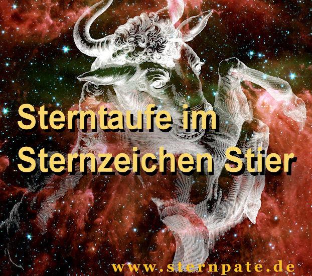 Stier-Sterntaufe-m